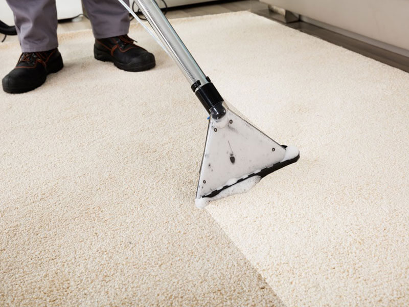 Professional carpet cleaning service in Sydney: Clean Australia Service